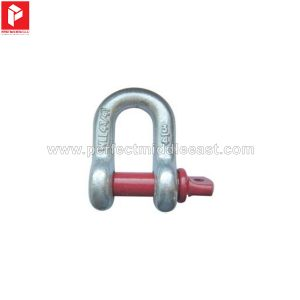 D' Shackle Hot Dip Galvanized Screw Pin Type